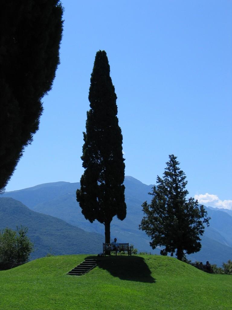 Een bankje onder een mooie cipres aan het Castello di Arco