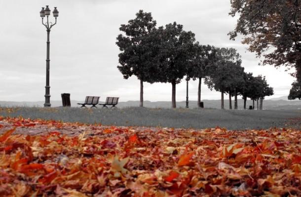 Herfst aan het Gardameer