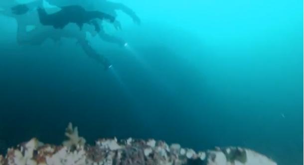 Ook onder het waterspiegel van het Gardameer valt er heel wat te beleven...