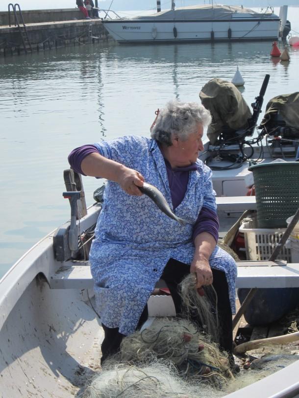 Vissen aan het Gardameer
