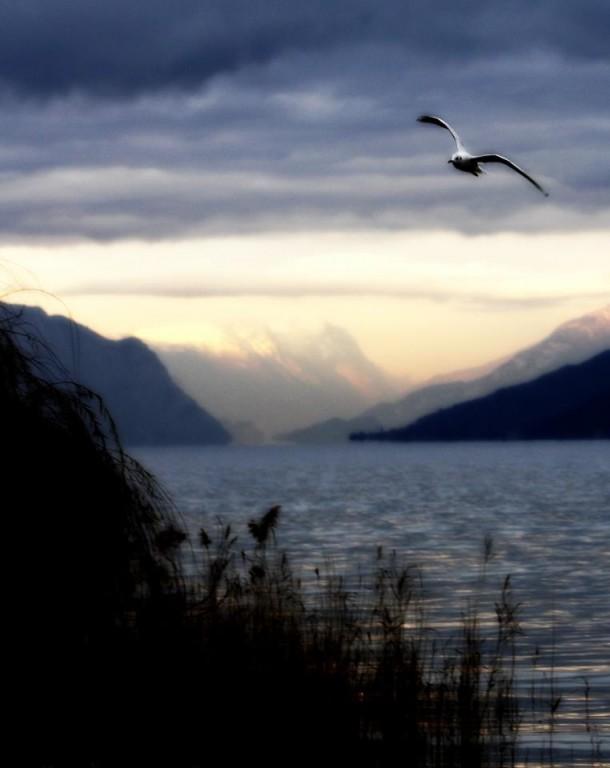 Lago di Garda pictures