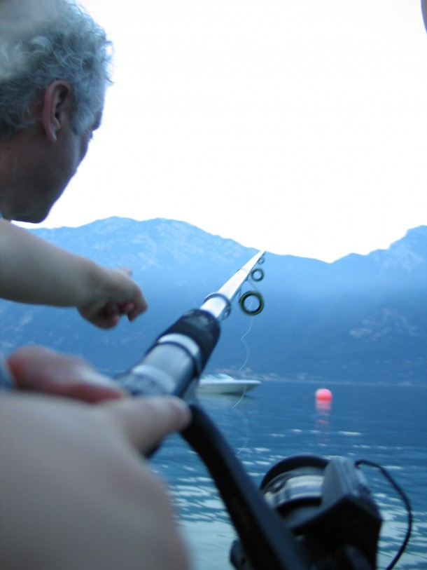 Gardameer vissen