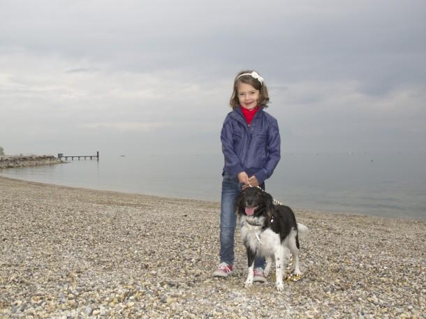 Gardameer honden toegestaan